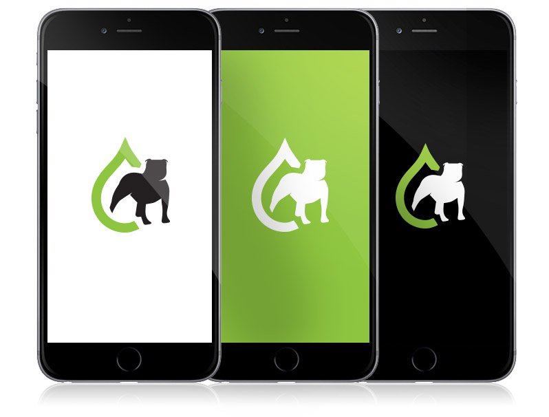 Denver logo design