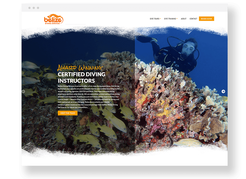 scuba diving website design